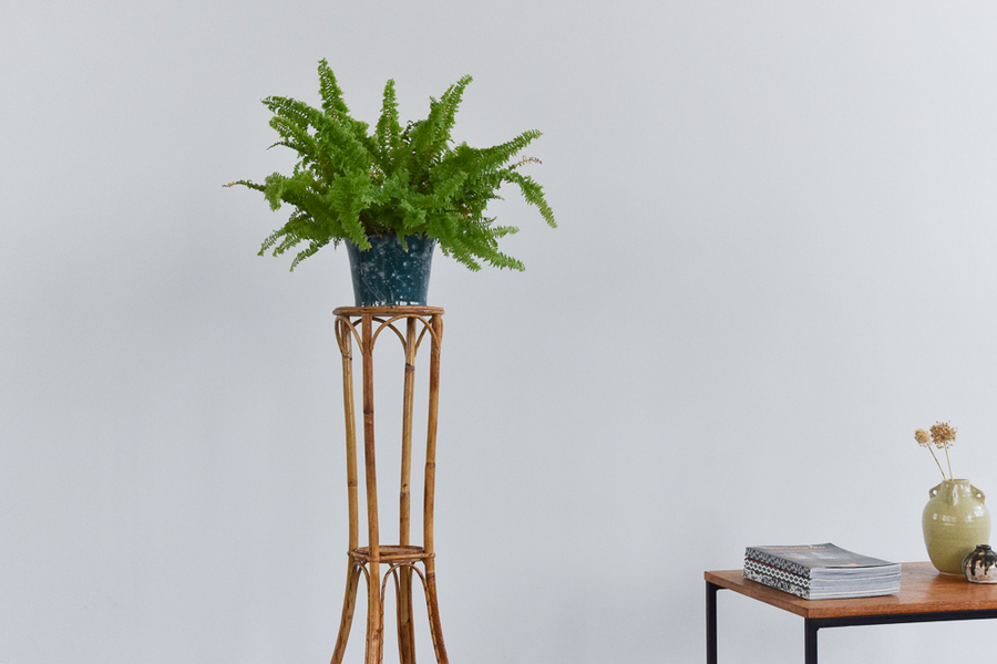Vintage Tall Bamboo Decorative Plant Stand / Pedestal