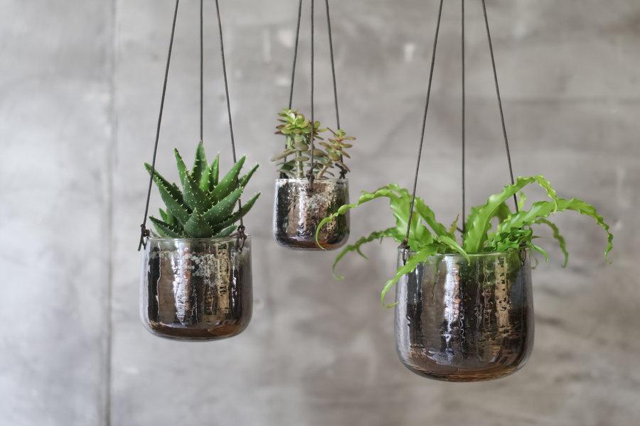 Aged Silver Glass Handing Planter Medium